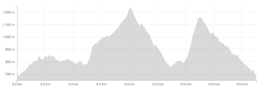 trail_running__sendai_izumigatake_trail_run___%e3%83%a9%e3%83%b3%e3%83%8b%e3%83%b3%e3%82%af%e3%82%99___strava